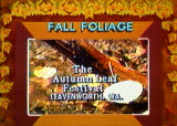 Weather Channel fall foilage graphic